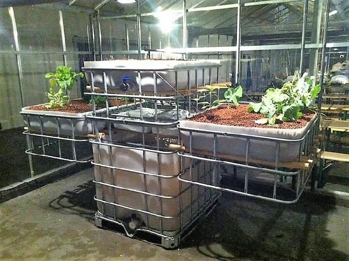 Еврокуб в фермерском бизнесе